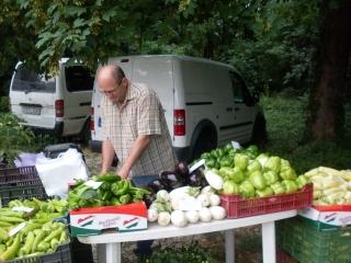Friss zöldség Gendáéktól